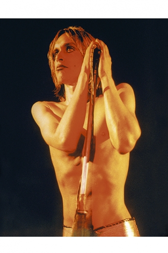 IGGY POP by MICK ROCK