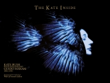 KATE BUSH, BIRDFISH, POSTER #3 by GUIDO HARARI